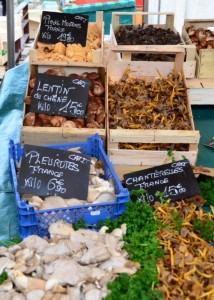 Versailles mushrooms vendor