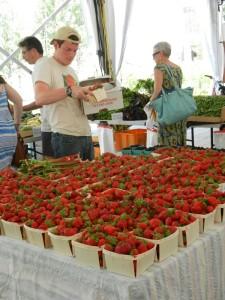 local strawberries Harvard