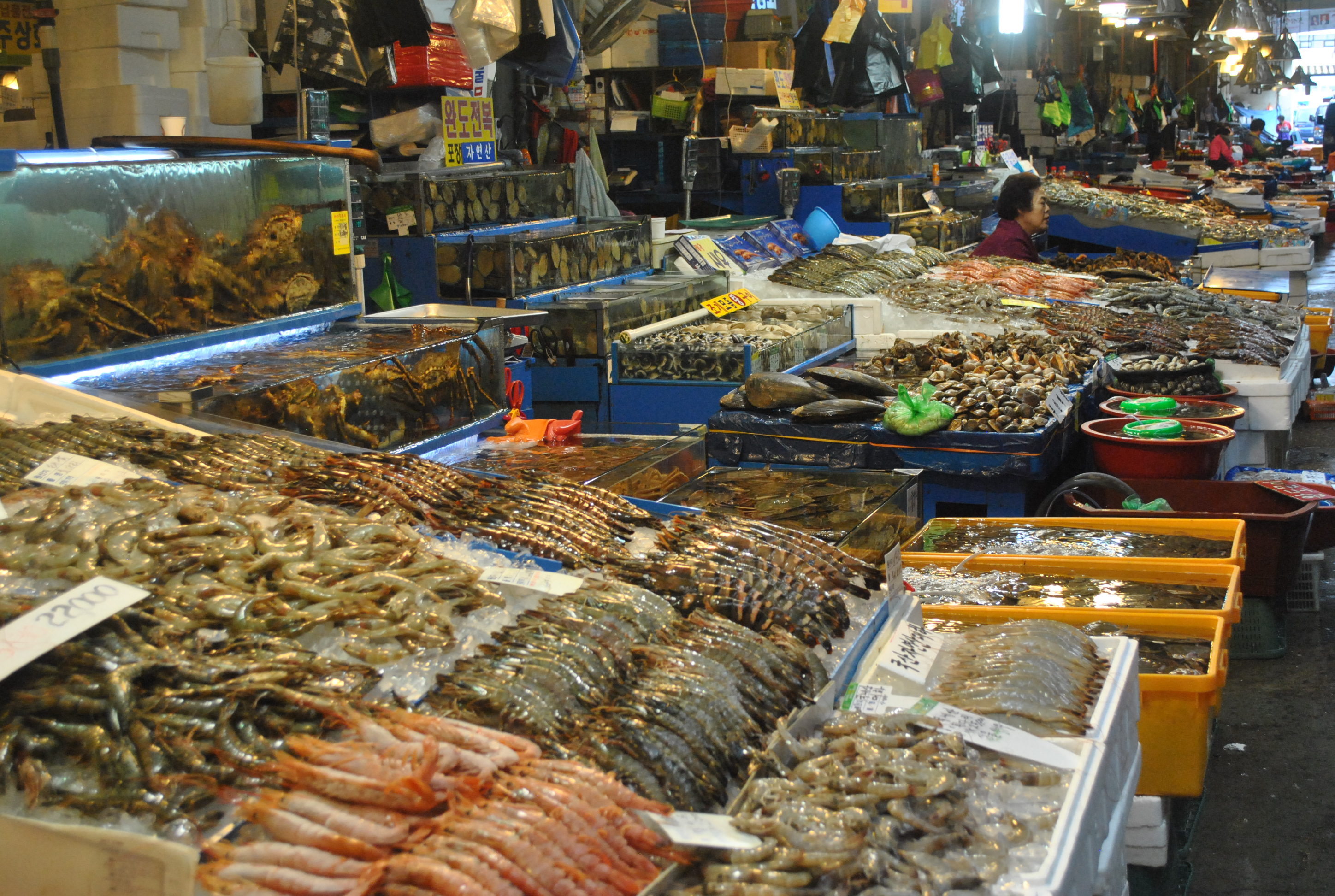 Fish market places of tourist in the world for Best fish market nyc