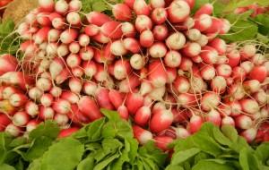 fresh seasonal produce at Marché Anvers